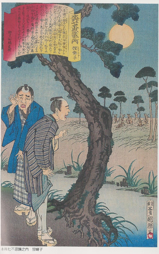 Tanuki bayashi
