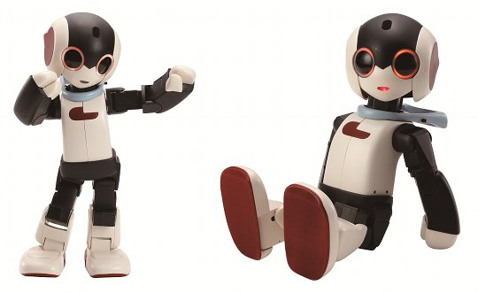 robi-mini-robot-kit-1