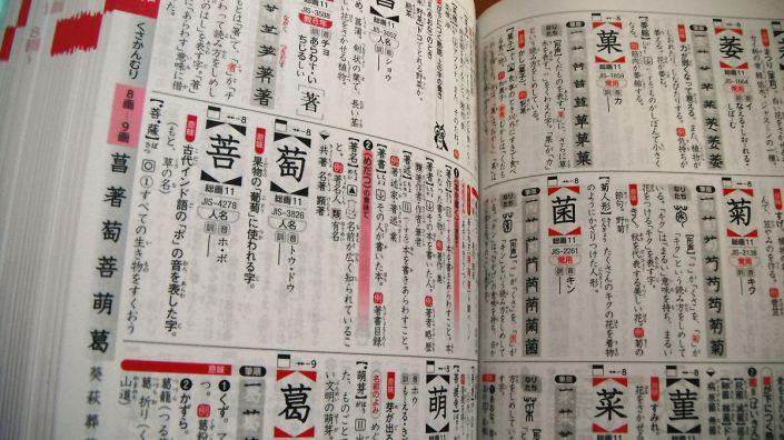 libri in italiano per lo studio del giapponese dizionari di kanji zanichelli maxi vallardi recensioni