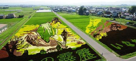 risposta giapponese ai cerchi nel grano pivelli la Tanbo art arte con i campi di riso (2)