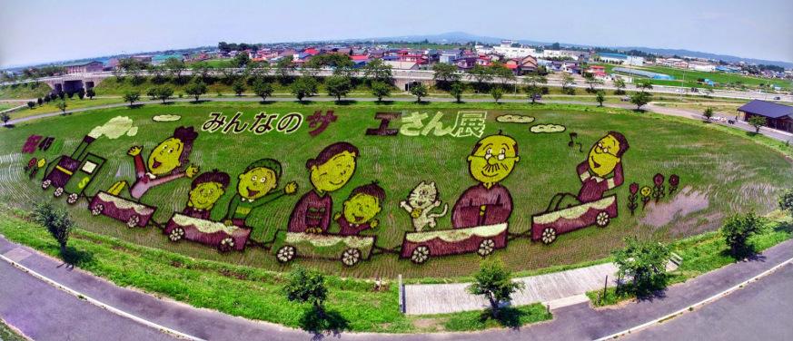 risposta giapponese ai cerchi nel grano pivelli la Tanbo art arte con i campi di riso (5)
